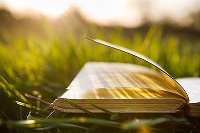Books on Balancing a Career, Motherhood and a Family
